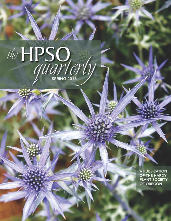 Hpsoquarterly Magazine spring 2016