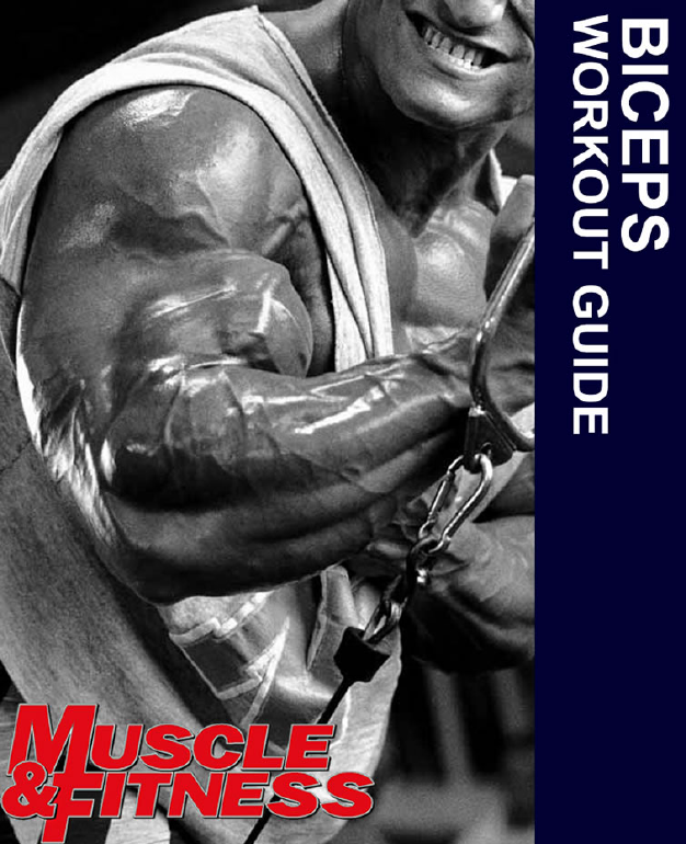 Biceps Workout Guide