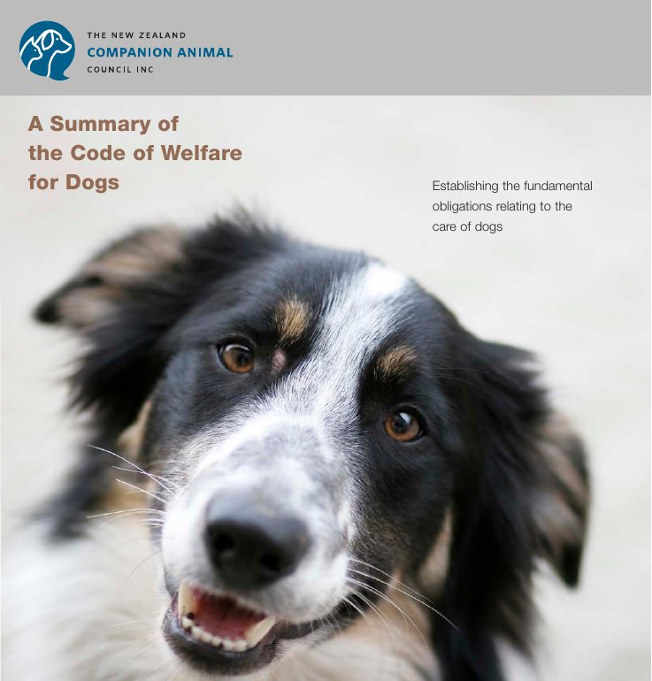 A Summary of the Code of Welfare for Dogs